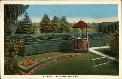 Early 20th century postcard of Cedar Hill arborvitae maze and watchtower